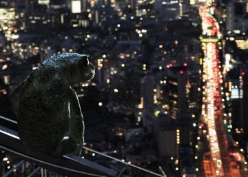 La aventura de vivir (y traducir) los sueños de Murakami