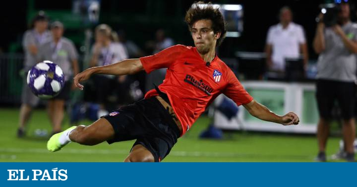 Atlético: João Félix and the mystery of solidity | sports