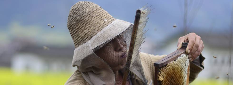 COAG pide más control sobre la miel china que sortea los aranceles