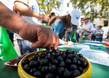 Estados Unidos ratifica los aranceles de Trump a la aceituna española