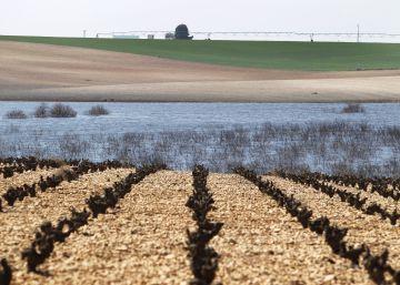 El 40% de los receptores de ayudas agrícolas europeas tienen más de 65 años