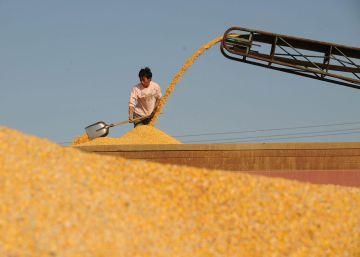 Una mayor productividad mantendrá bajos los precios de los alimentos la próxima década