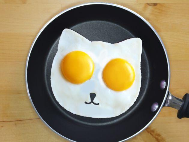 Resultado de imagen para Yema de huevo: ¿es más o menos saludable según su color? youtube
