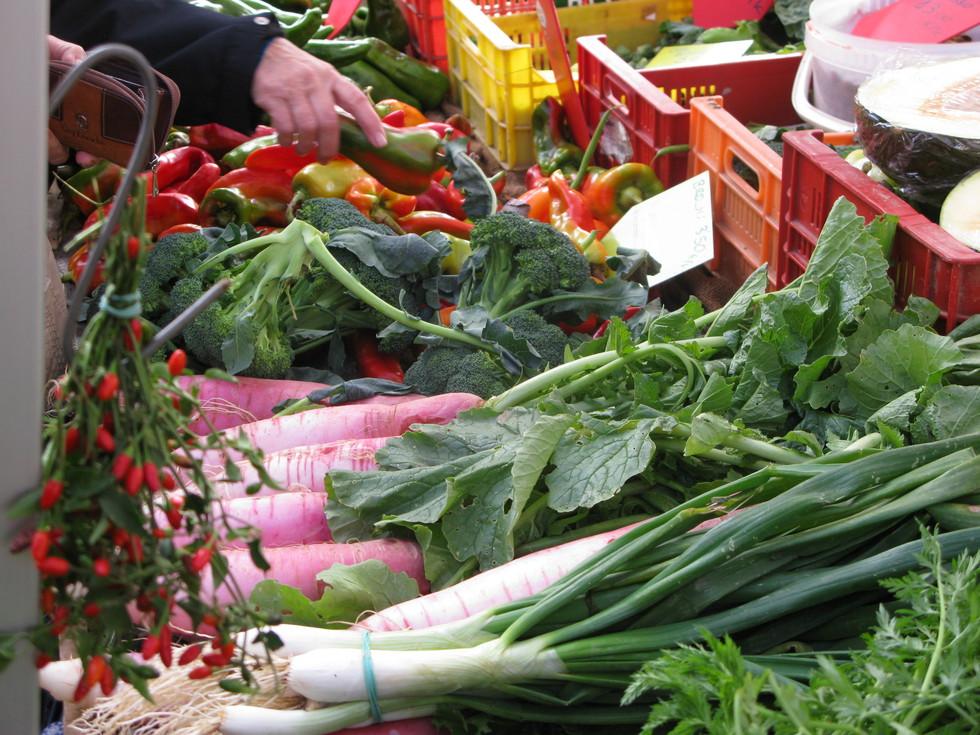 0db3c53a704c Puede la agricultura ecológica alimentar al mundo