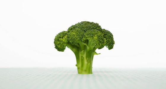 cómo puedo producir alimentos para llevar una dieta saludable
