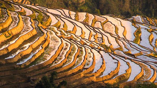 Las Increíbles Terrazas De Arroz De Yuanyang Blog Paco
