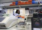 España también quiere manipular los virus más peligrosos