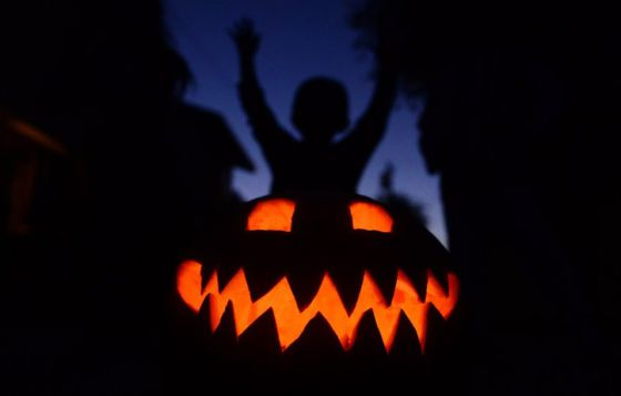 Las mejores calabazas para Halloween Actualidad EL PAS