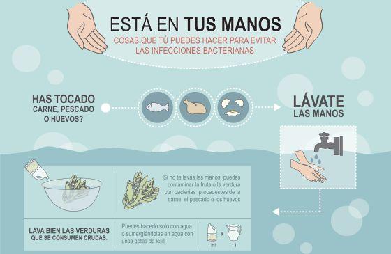 ¿Cómo se pueden prevenir las enfermedades transmitidas por el agua?
