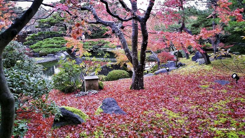 Manual de instrucciones para ver el oto o en jap n blog for Fotos de jardines preciosos