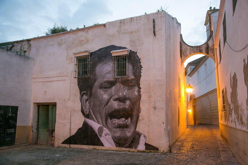 Fotos presencias en el xx festival de flamenco de jerez for Calle prado jerez 3 navacerrada
