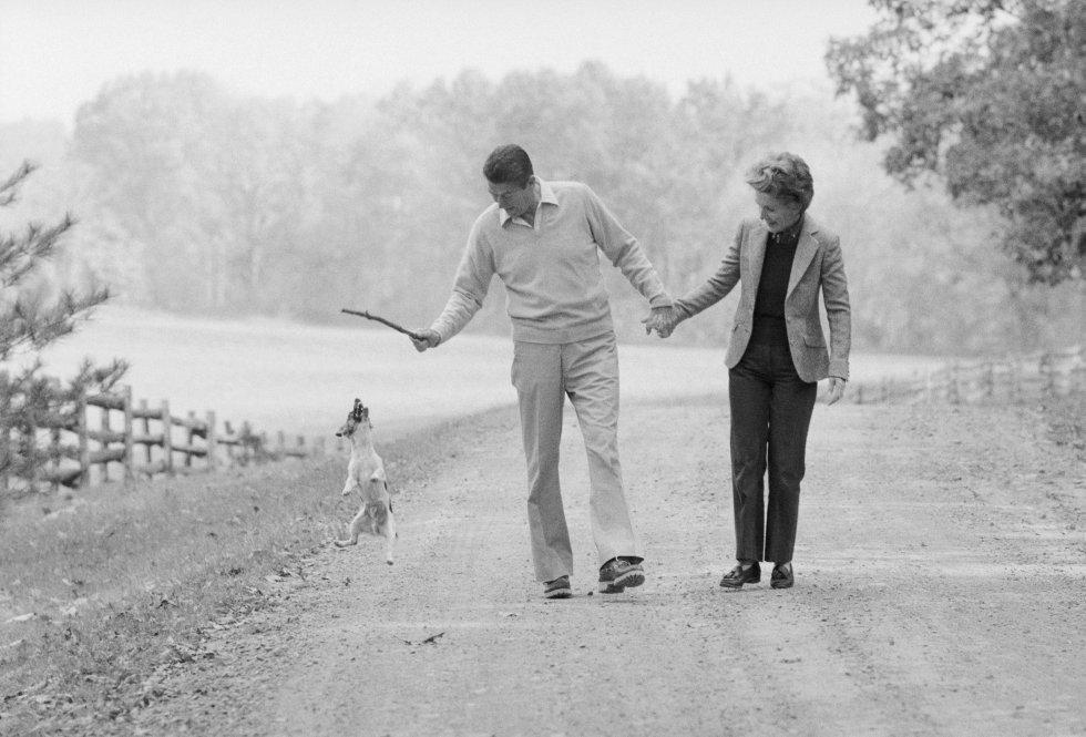 24 de octubre de 1980. El candidato a la presidencia de los Estados Unidos Ronald Reagan y su mujer Nancy juegan con su perro en su vivienda en Virginia.
