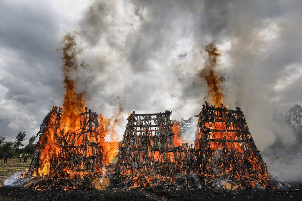 Fotos: Kenia quema más de 5000 armas de fuego   Actualidad   EL PAÍS