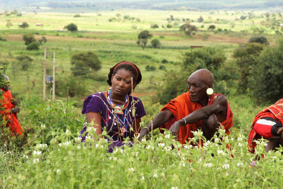 Fotos: Nailantei, guerrera masai por los derechos de las mujeres ...