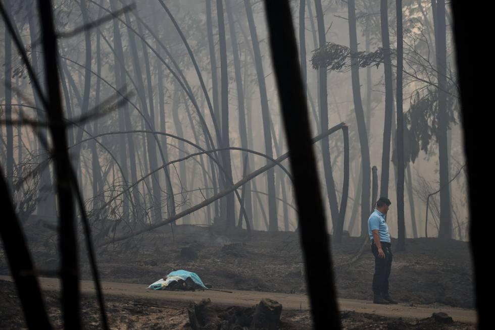 Un policía junto al cádaver de una de las víctimas del incendio de Pedrógão Grande (Portugal).