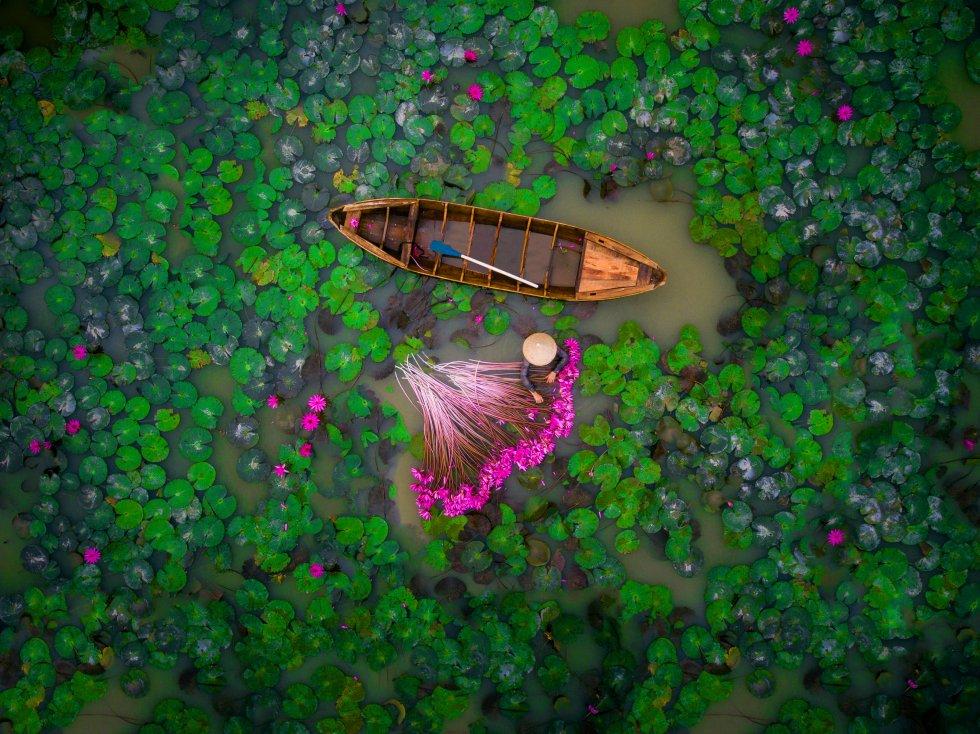 El segundo premio de la categoría Gente del concurso organizado por   Dronestagram  y National Geographic fue para esta imagen de una mujer recolectando lirios de agua en el delta del río Mekong, en Vietnam.