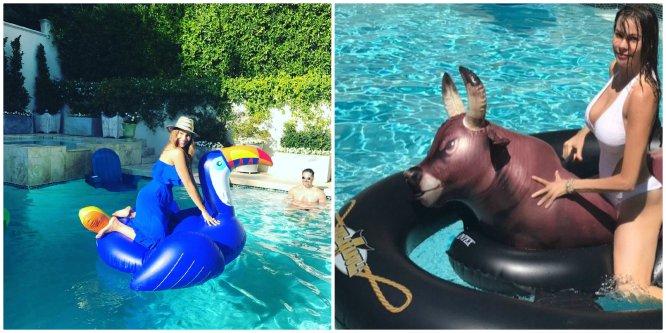 Fotos flamencos rosas y otros bichos que invaden las for Colchonetas piscina