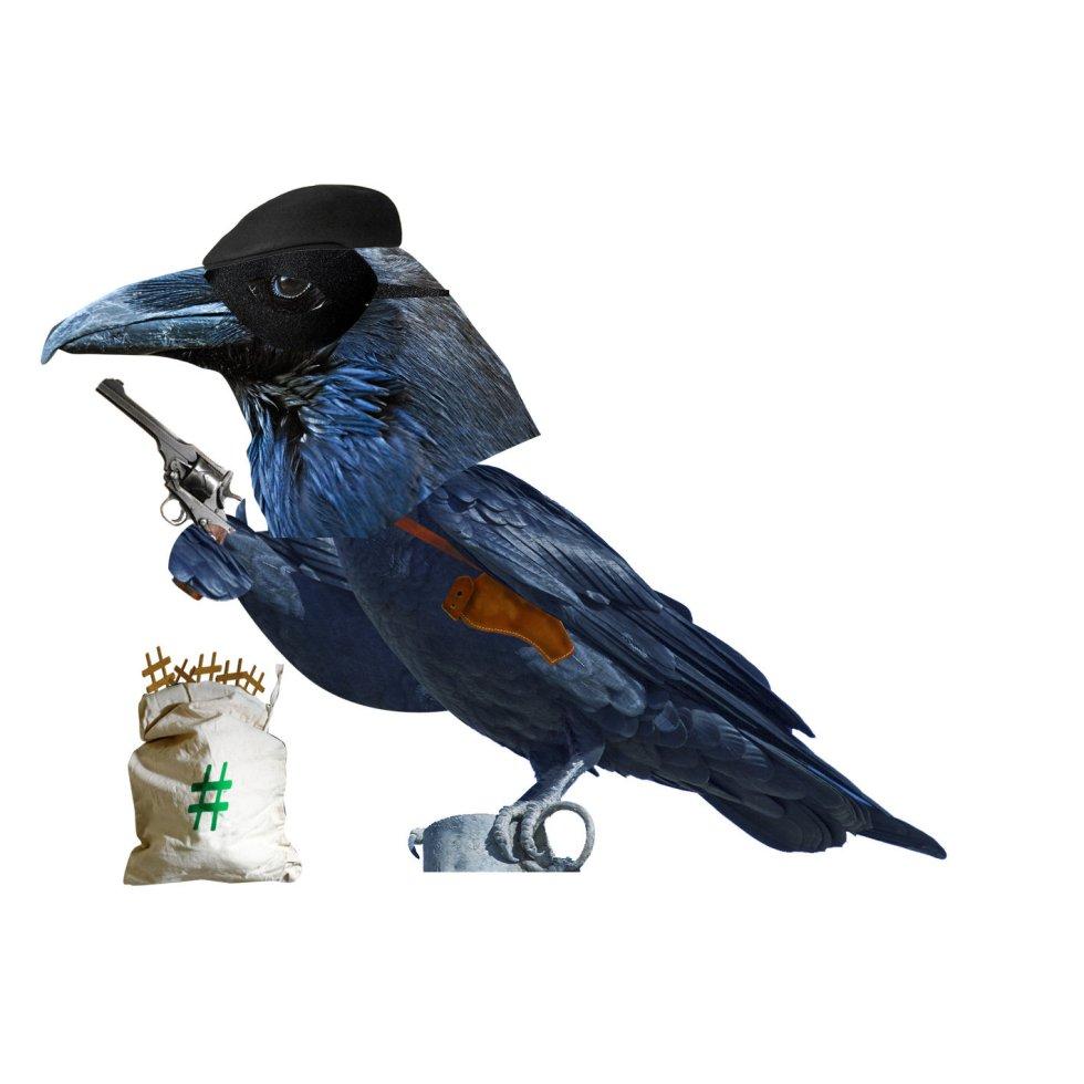 """El éxito del libro 'Aviario' ha llevado a sus promotores a alargar su vida en Podium, la plataforma 'podcasts', de PRISA Radio. En la imagen, el cuervo, señal de mal augurio en la web porque si ven algo que les gusta """"lo copian, pegan y se lo apropian""""."""