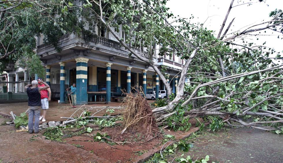 Dos hombres observan un árbol caído en una calle en La Habana.