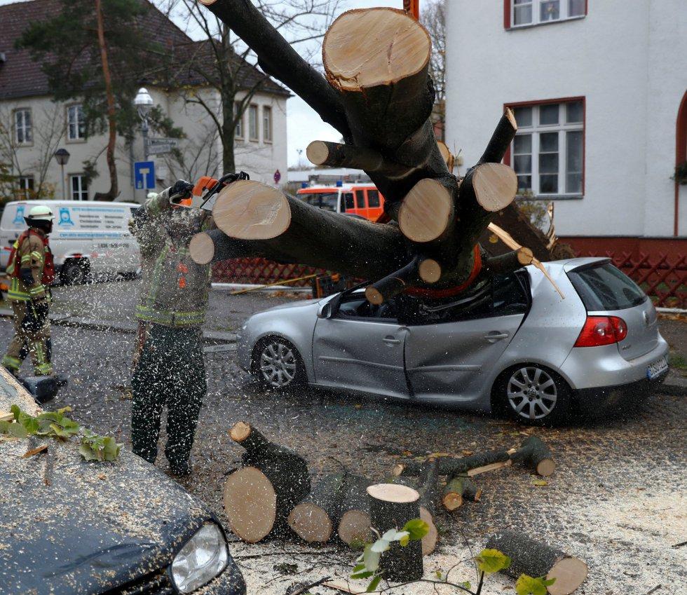 Los bomberos tratan de cortar un árbol que cayó sobre un coche aparcado durante el paso de la tormenta Herwart en Berlín el 29 de octubre.