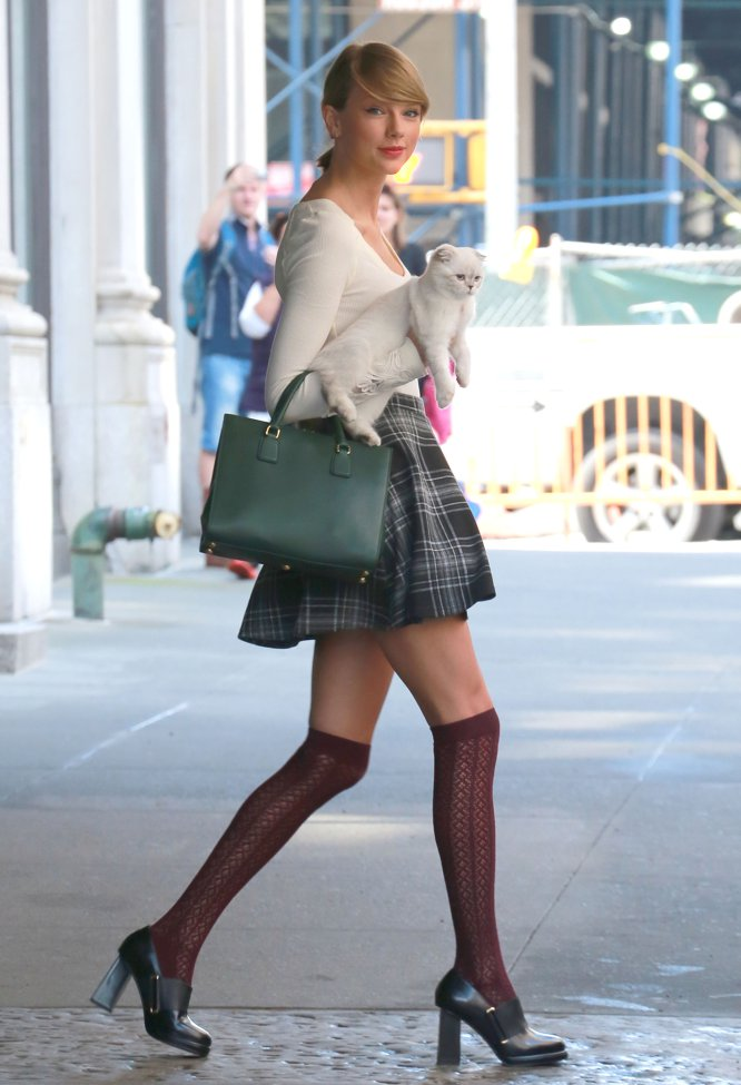 Taylor Swift es una amante de los gatos, y de hecho vive con más de uno, como ella muestra en su cuenta de Instagram, en la que tiene 104 millones de seguidores. Una cuenta de la que borró todas las fotos que tenía la pasada primavera. Y donde no volvió a publicar hasta agosto, en un perfil que hoy solo utiliza para promover su nuevo disco, 'Reputation'.