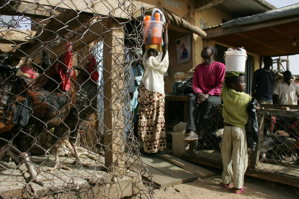 En 2017, el número de migrantes internacionales en todo el mundo ha alcanzado 258 millones respecto a los 248 millones de 2015. Pero a pesar de ese aumento, la mayor parte de los migrantes (unos 763 millones de personas) se mueven dentro de su propio país. En Estados como Nigeria (en la imagen, un mercado rural en Vom, en el centro de aquel país) o Uganda, los desplazamientos internos son hasta el 80% del total.
