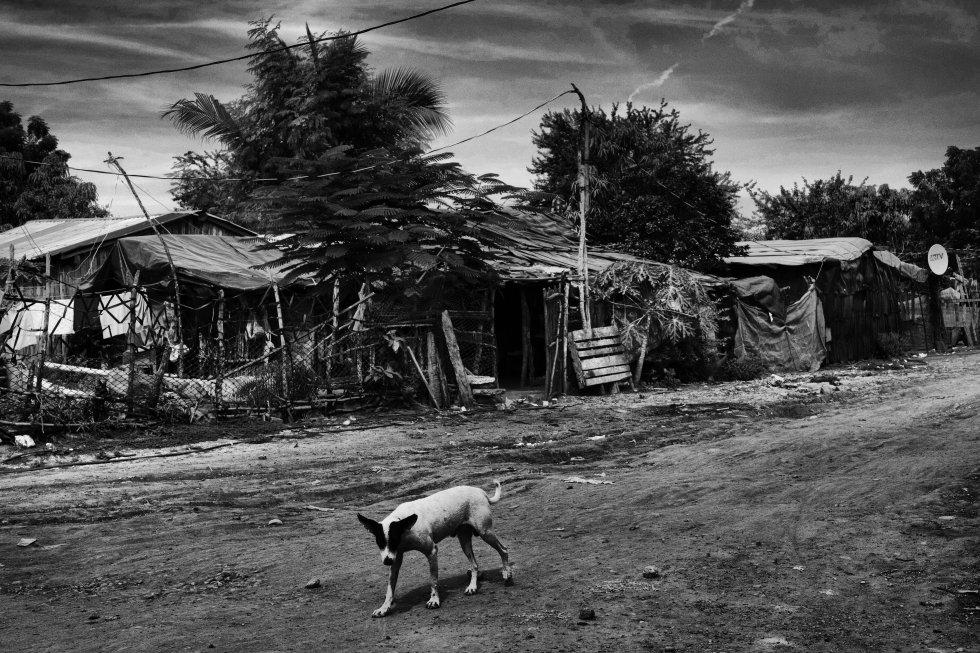 Esta comunidad ha recibido personas desplazadas durante más de 10 años. Ante las difíciles condiciones en las que viven, las familias se ven obligadas a migrar, en su mayoría a Estados Unidos, y con ello se diluye su condición de desplazados.
