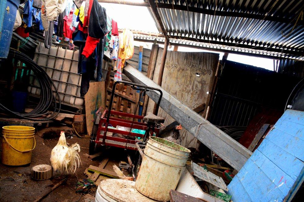 Entrada de la vivienda de Jessica. Ahí el suelo es de tierra y es el lugar donde viven gallinas y pollos que tiene para autoabastecimiento.rn