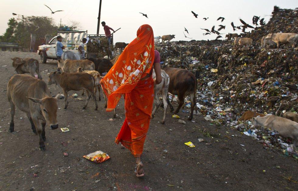 Uma mulher caminha com seu gado em um lixão em Gauhati (Índia), em 7 de março.