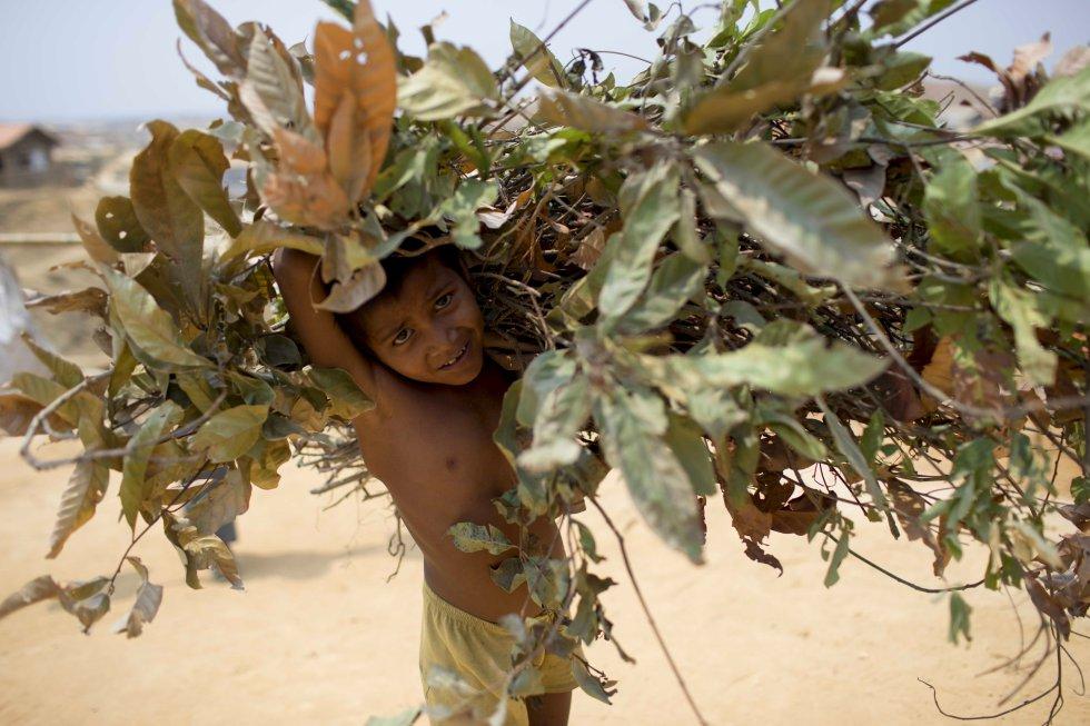 Un niño recoge ramas para cocinar en el campo de refugiados de Kutupalong. Los rohinyás deforestan cada día el equivalente a cuatro campos de refugiados. Las agencias internacionales buscan combustibles alternativos.