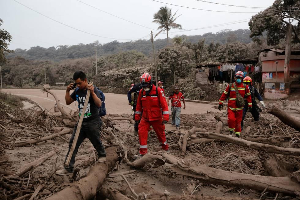 Bomberos recorren un área afectada por la erupción del volcán de Fuego mientras buscan cuerpos o sobrevivientes en la comunidad de San Miguel Los Lotes en Escuintla, el 4 de junio de 2018.