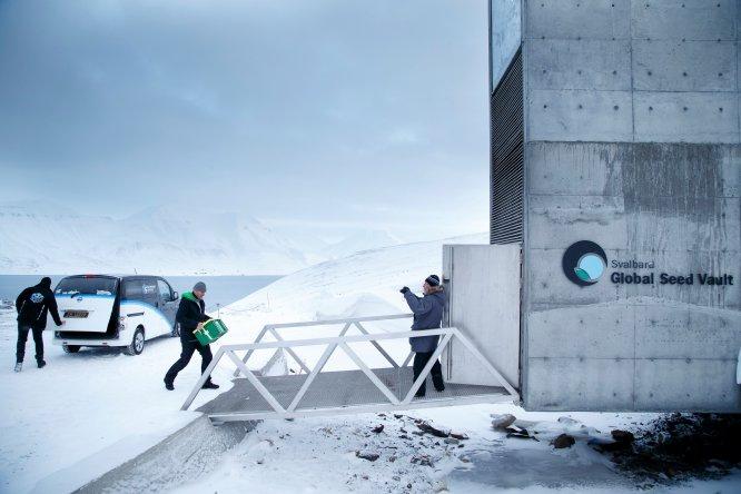 """""""En Longyearbyen se prevé la catástrofe constantemente"""", afirma Javier Reverte. De ahí que con el fin de salvaguardar la biodiversidad, en 2008 se construyera una cámara acorazada a prueba de bombas nucleares y terremotos, el Banco Global de Semillas, que alberga cien millones de simientes de plantas alimenticias. Estas semillas se conservan a 120 metros de profundidad con una temperatura estable de -18 ºC, condiciones que garantizan su conservación durante varios siglos. Ante un cataclismo natural, una guerra o un apocalipsis, el banco de las Svalbard –conocido popularmente como 'El semillero del fin del mundo' o 'El arca de Noé vegetal'– daría una nueva oportunidad al mundo de reconstruirse. """"Allí tomas conciencia de que el cambio climático es algo real que está ocurriendo y destruyendo el planeta. Medidas como el almacenaje de estas semillas es la prueba de que puede ocurrir una catástrofe en cualquier momento"""", confiesa Reverte."""