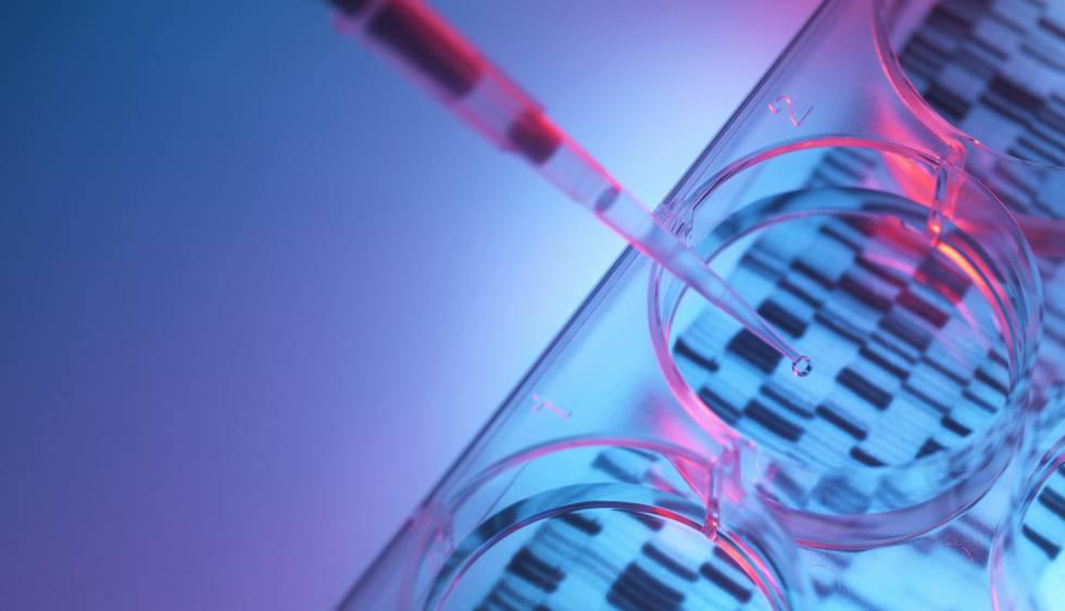 Desarrollado un fármaco epigenético para frenar un tipo de linfoma