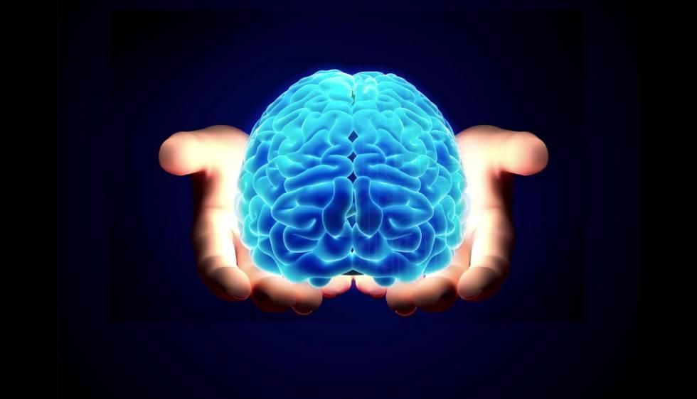 Los lazos genéticos entre las enfermedades del cerebro, al descubierto