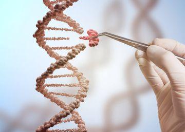¿Por qué no se usa ya la modificación genética para eliminar las enfermedades?