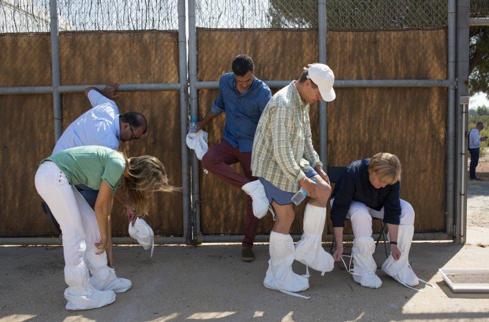 Los mandatarios se cubren los zapatos antes de empezar la visita en el centro El Acebuche, Matalascañas, Huelva.