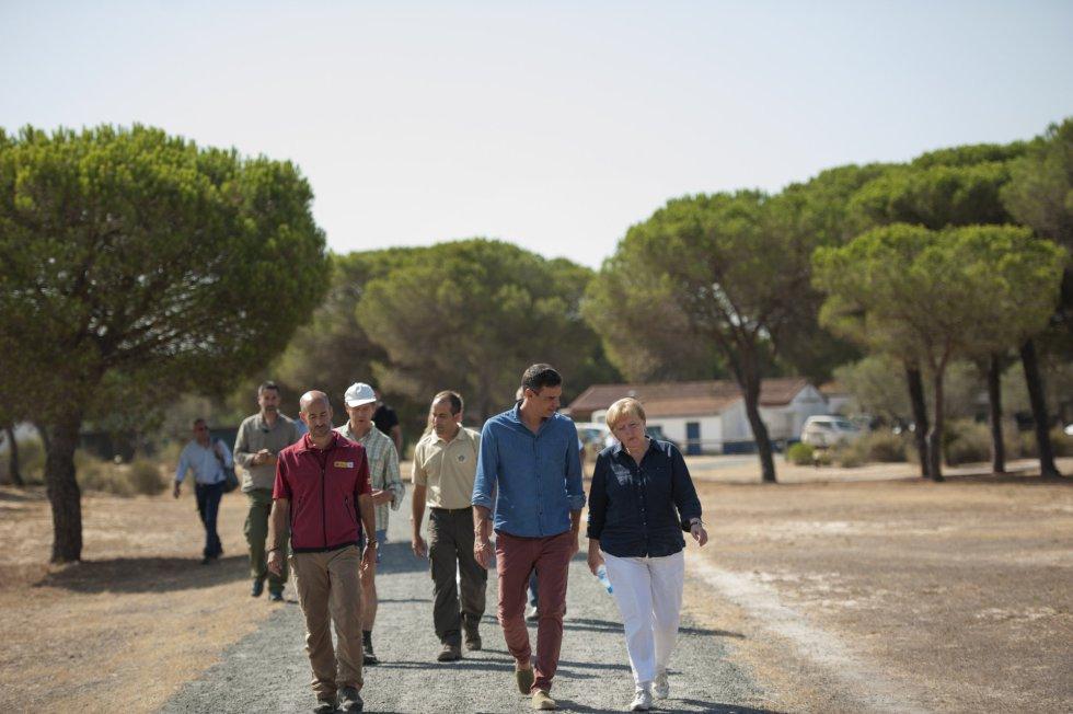 Pedro Sánchez y Angela Merkel a su llegada al centro de cría El Acebuche, el 12 de agosto de 2018 en Matalascañas, Huelva.