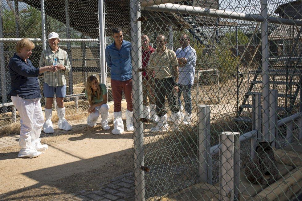 Ambos mandatarios han recorrido este domingo las instalaciones del centro de cría en cautividad de El Acebuche, pionero en el Programa de Conservación Ex situ del Lince Ibérico, donde nació la primera camada de esta especie en cautividad el 28 de marzo de 2005.