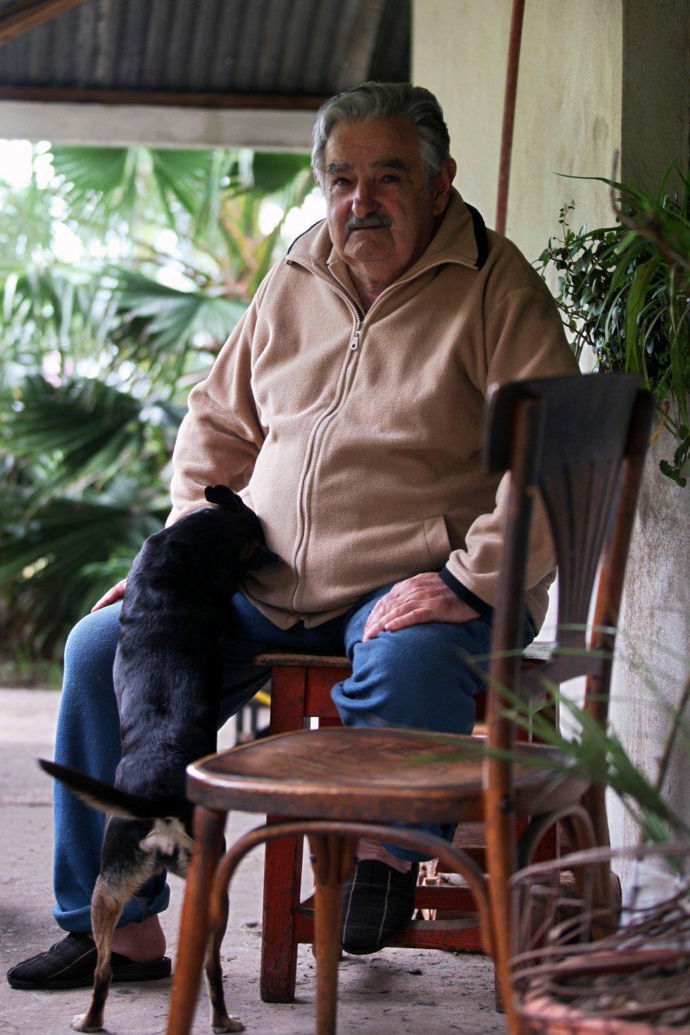 José Mujica, juega con sus perros en su granja en Rincón del Cerro, Montevideo (Uruguay), el 27 de noviembre de 2009, dos días antes de la segunda vuelta de las elecciones presidenciales, cuando era candidato del partido Frente Amplio.