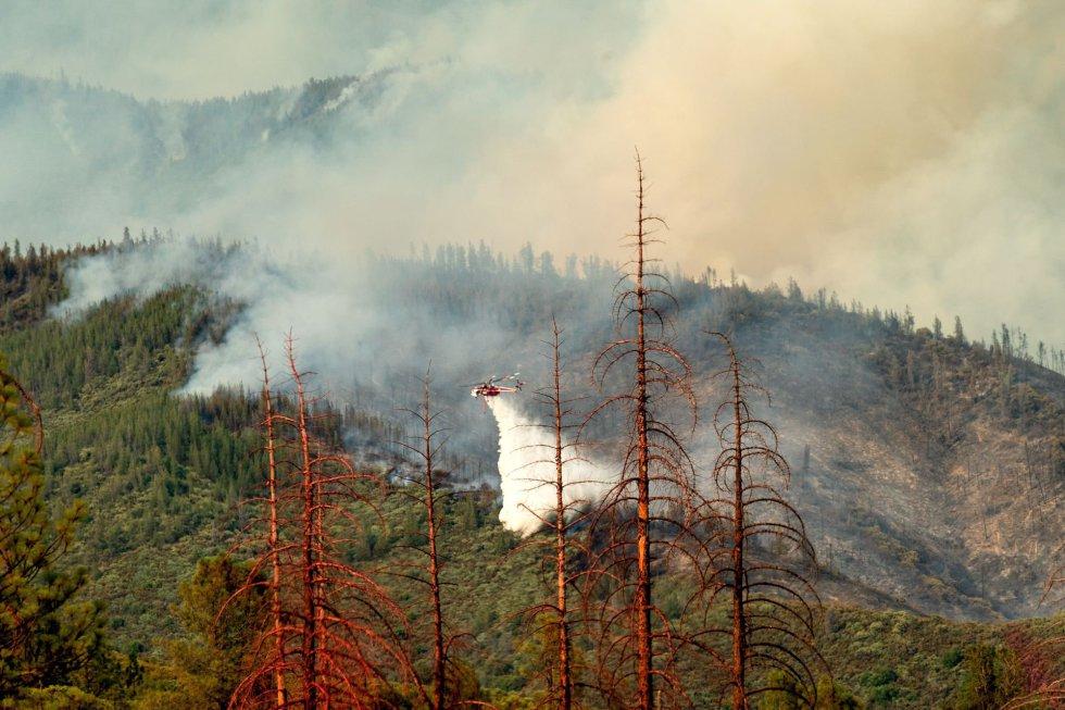 California ha sido otra de las grandes afectadas por los incendios durante todo el año. A finales de julio, en el norte comenzó el denominado incendio 'Mendocino Complex', un fuego que se propagó durante 11 días con un total de 114.800 hectáreas abrasadas por las llamas, siendo este el peor incendio de su historia. La gran cantidad de árboles muertos por la sequía y los escarabajos de corteza han permitido que los incendios forestales se propaguen rápidamente. En la foto, árboles muertos se alinean en un claro cuando un helicóptero que lucha contra el fuego Ferguson pasa por detrás en el Bosque Nacional Stanislaus, California, el 22 de julio de 2018.