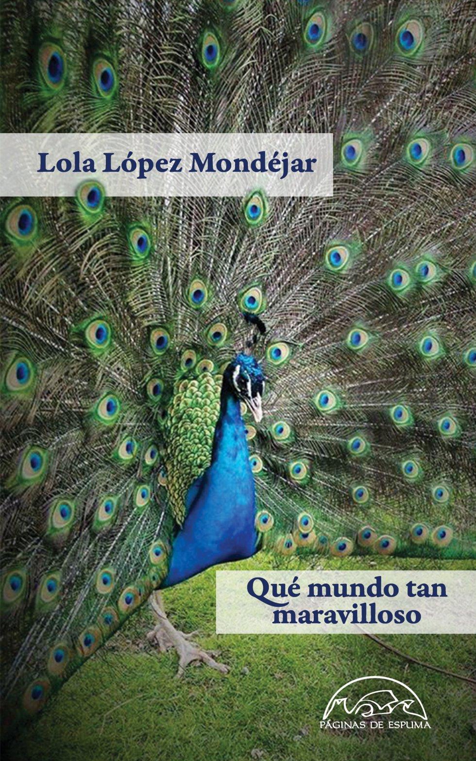 Empezaré hablando de un asunto que incumbe a 'Qué mundo tan maravilloso'. Es cierto que hay leyes aplicables a la escritura de cuentos. Esas leyes se suelen respetar más o menos consciente o inconscientemente, aunque quienes más las observan son los que las han creado. A partir de aquí cada escritor puede hacer lo que quiera. Porque es obvio que nadie escribe con el manual en la mano, por más que esté firmado por Hemingway o Ricardo Piglia. Digo esto porque me parece que la escritora murciana Lola López Mondéjar ha escrito los cuentos que conforman 'Qué mundo tan maravilloso', haciendo caso solo a la materia argumental que salía de su imaginación. Y, sobre todo, a la visión que la escritora tiene de unas mujeres en unas condiciones muy concretas.