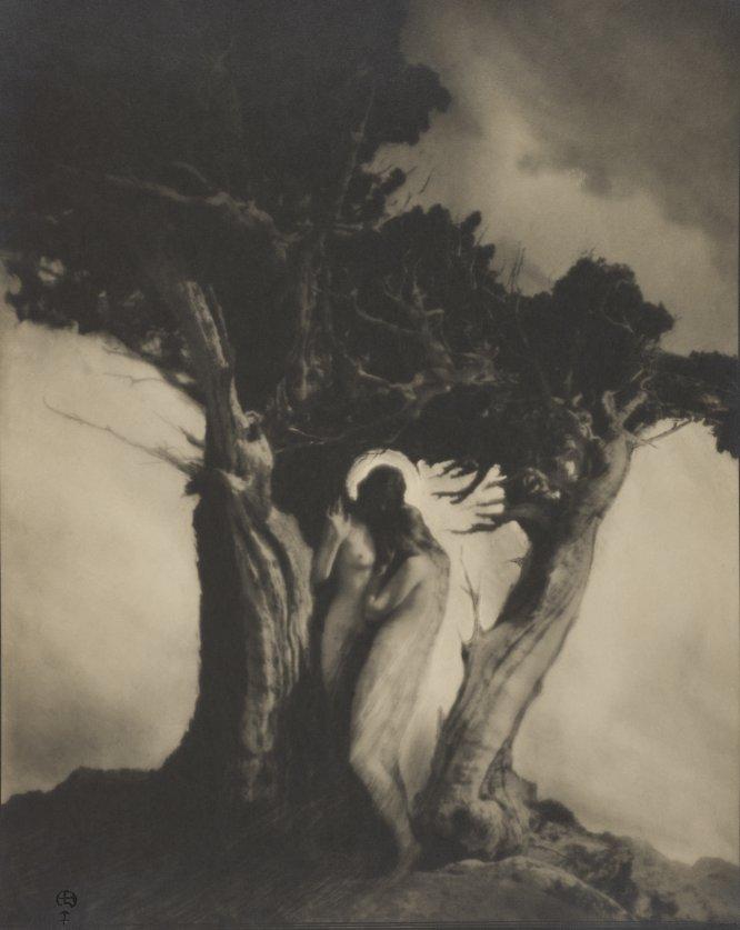 """Em 1905, uma mulher se retratou nua nas montanhas acidentadas de Serra Nevada, na Califórnia. """"Eu queria ser livre ... Isso era tudo que eu queria"""", lembrou Anne Brigman (1869-1950). No meio da transição dos valores da era vitoriana para o alvorecer da era moderna, a fotografia rompeu regras. """"Para Brigman mostrar seu próprio corpo nu como tema de suas fotografias no início do século XX foi algo radical. Ao fazê-lo ao ar livre, em um lugar inabitado de natureza praticamente inóspita foi revolucionário """", diz Ann M. Wolfe, curador da primeira grande retrospectiva dedicada a esta fotógrafa, poeta e protofeminista."""