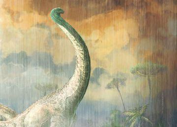 Una conspiración cósmica contra los dinosaurios