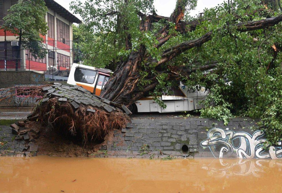 El fuerte aguacero que cae sobre Río de Janeiro desde la madrugada de este martes ha dejado al menos tres muertos y una persona más desaparecida. En la imagen, un autobús aplastado por un árbol caído en un área inundada.