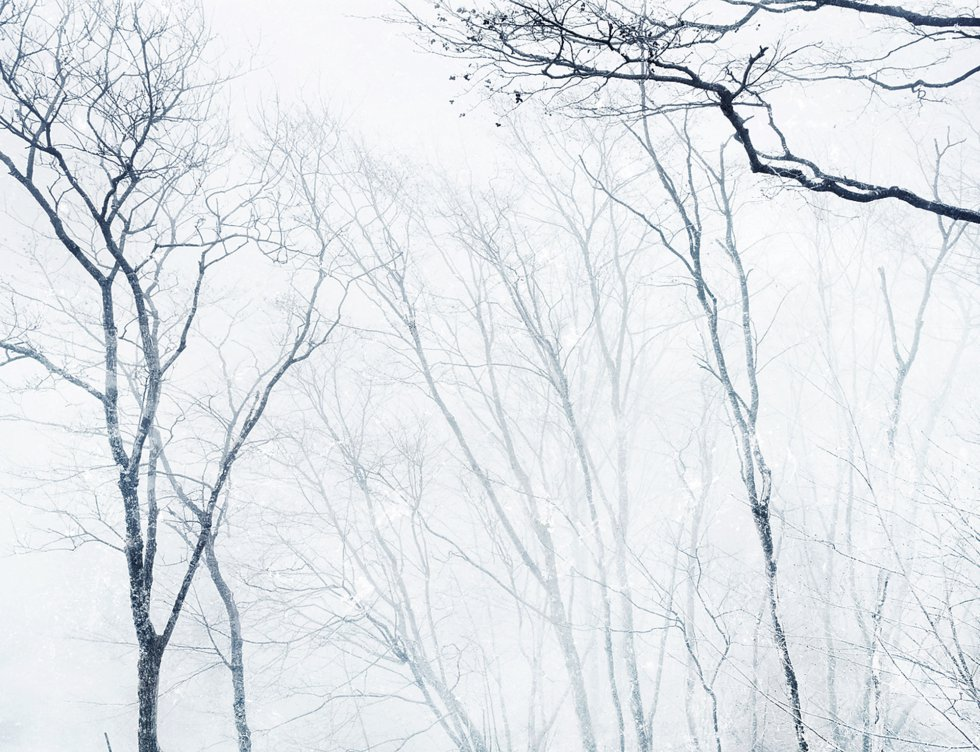 Kioto no inverno.