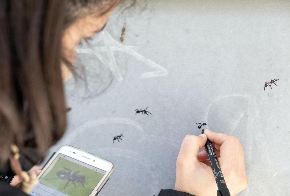 """La gran mayoría de concursantes de Galería Urbana hacen uso de la puerta entera para plasmar sus diseños. El trabajo de Elisa Rodríguez es minimalista. Pinta animales """"que dan repelús"""". Ha creado lagartijas, palomas, gorriones, hormigas e incluso un escarabajo que abunda en la zona. Un homenaje a la fauna local. En escasos minutos dibuja un insecto en la puerta. """"A algunos compañeros les he pedido que me dejen pintar bichos en sus obras. Quiero integrar a los pequeños"""", afirma esta vallisoletana. De igual manera ZOES integra a los vecinos. """"Unas 3.000 personas pasan por la sede cada semana"""", confirma la directora Inma Cid, que forma parte de la asociación desde hace 25 años."""
