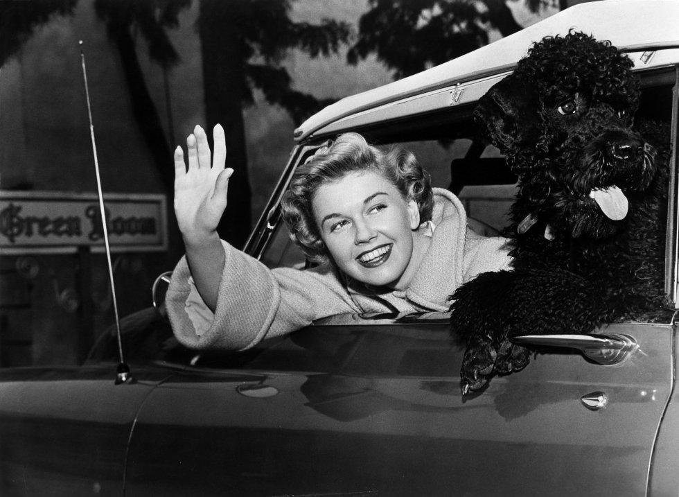 Doris Day, con un caniche, en su automóvil, en 1955.