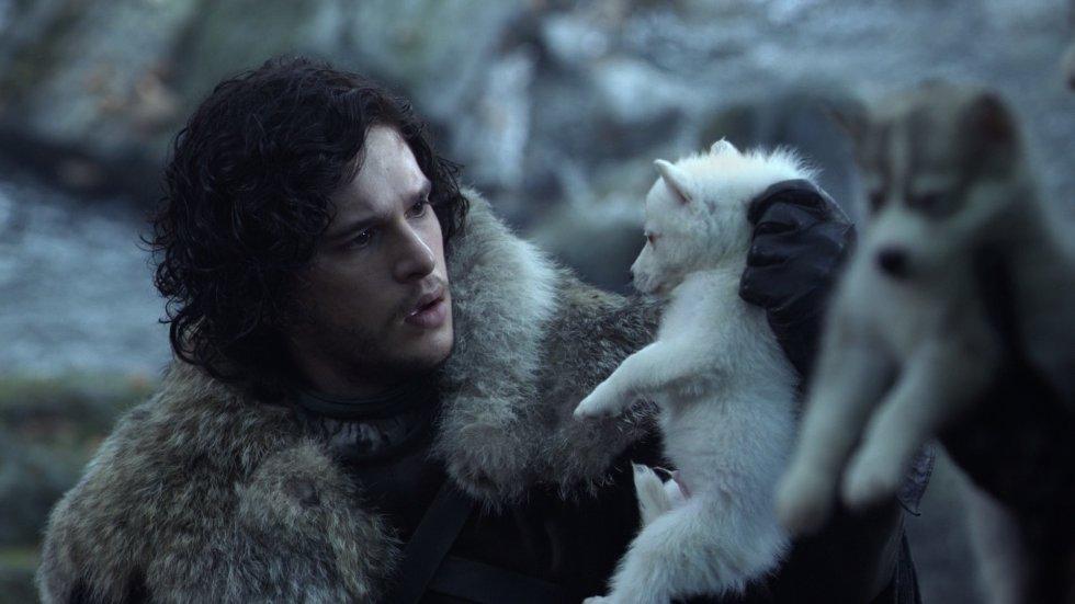 """La relación de Jon con todo lo que tiene que ver con lo que hay más allá del Muro de Hielo comienza con el descubrimiento de unos cachorros de lobos huargos, animales que no se veían en Invernalia desde hacía siglos. Cada hermano Stark se queda con un cachorro. Jon elige uno blanco al que llama Fanstama (Ghost). A lo largo de la serie la relación entre hombre y animal es muy cercana (motivo por el que en la última temporada se ciriticó la frialdad con la que Jon se despidió de su compañero). En los libros es tan cercana la relación que la última palabra que Jon dice antes de morir (y luego renacer) es """"Fantasma"""". El lobo acompañará a Jon en Castillo Negro en el Muro, al Puño e los Primeros Hombres (donde salva a Sam de un caminante blanco) y vela su cadáver bajo la nieve."""