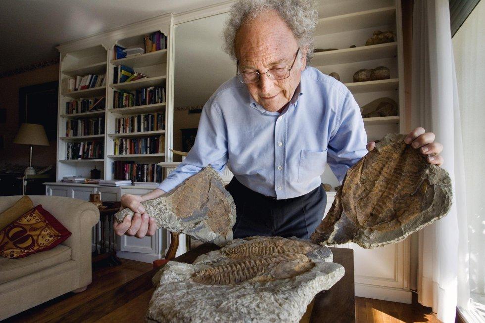 Punset muestra su colección de fósiles, en su domicilio de Barcelona en 2007.
