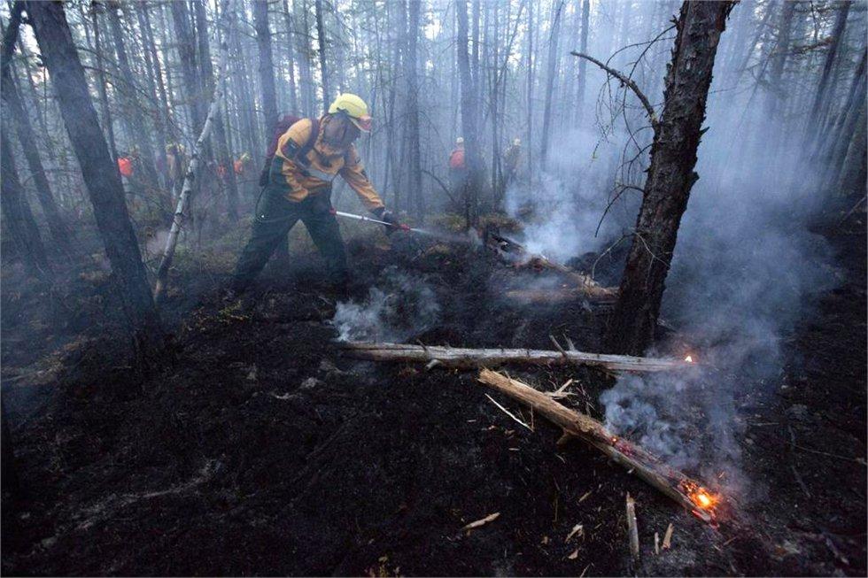 Miembros de los equipos de emergencias sofocan el fuego en la taiga siberiana.